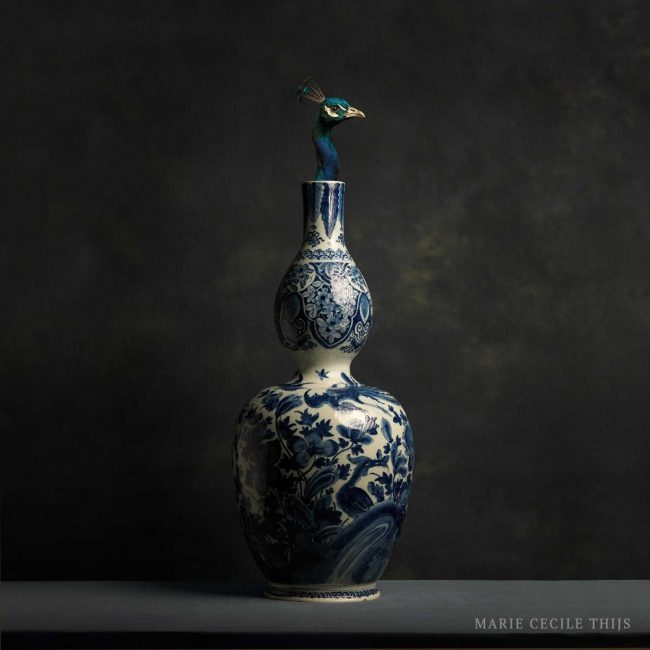 Delftware-Vase-and-Peacock_15-12-2015-full