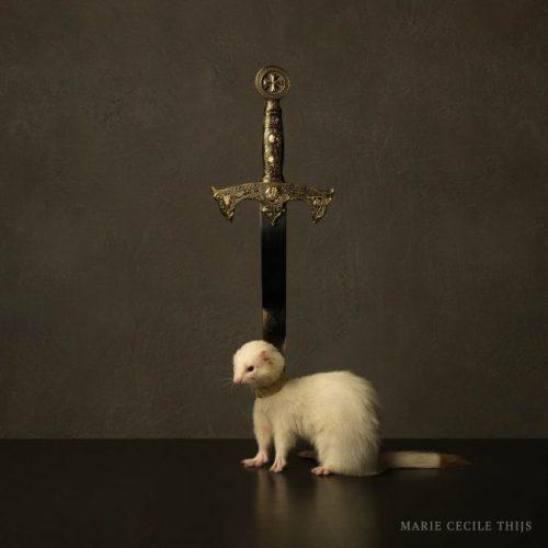 Ermine & Sword