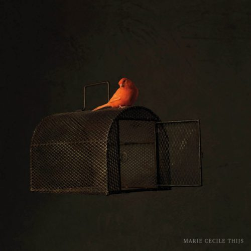 Cage & Bird